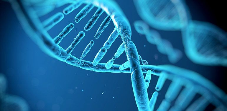 ДНК тест на отцовство и не только