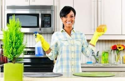Эти предметы собирают больше всего бактерий на кухне