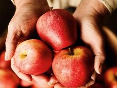 Медики назвали самый полезный фрукт для здоровья кишечника