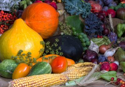Эти продукты можно есть в любое время суток