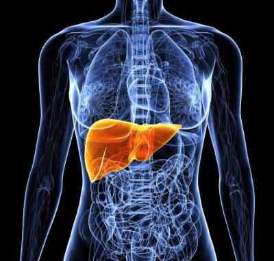 Эти симптомы могут свидетельствовать о заболеваниях печени