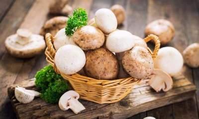 Медики объяснили, какие грибы необходимо есть регулярно