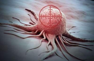 Найдены новые мишени для лекарств от рака