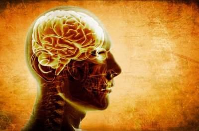Ученые приблизились к созданию лекарства от опасной болезни