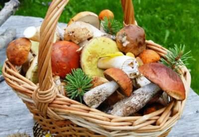 Врачи подсказали, какой овощ может защитить от болезни Альцгеймера