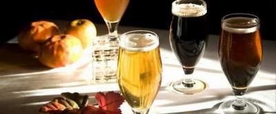 Врачи рассказали о пользе разных сортов пива