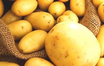 Врачи назвали один из самых полезных овощей для печени