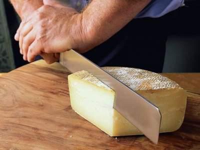Ученые открыли пользу жирного сыра