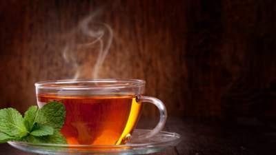 Медики подсказали, какой напиток может защитить от атеросклероза
