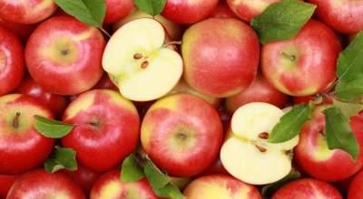 Медики рассказали, при каких болезнях полезна кожура от яблок