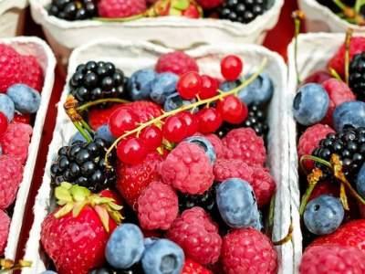Врач рассказала, как зимой правильно есть ягоды и фрукты