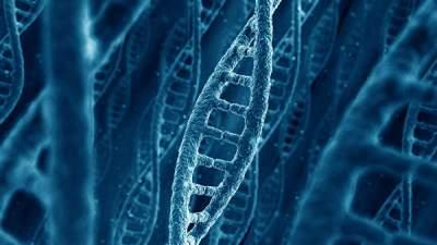 Ученые нашли генетические мутации алкоголизма