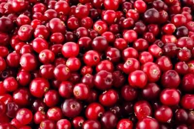 Названа ягода, способная устранить зубную боль