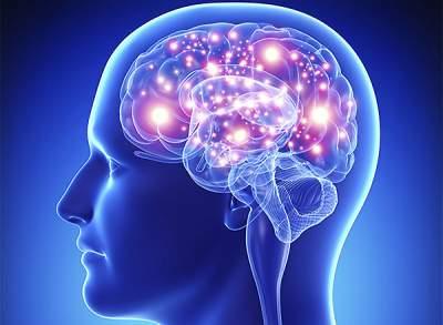 Медики подсказали простой метод улучшить память и работу мозга
