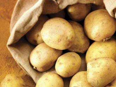Ученые выяснили, как картофель влияет на набор веса