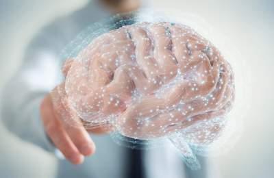 Ученые нашли различия в мозге богатых и бедных