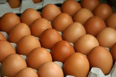 Названы удивительные свойства куриных яиц