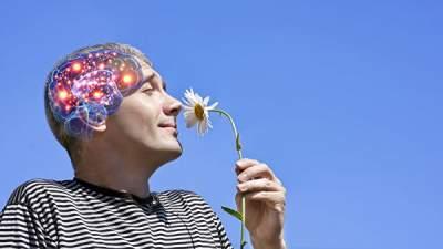 Ученые объяснили, как весна меняет организм человека