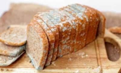 Медики предупредили об опасности хлеба с плесенью