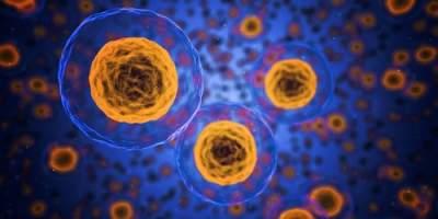 Ученые определили главную причину рака