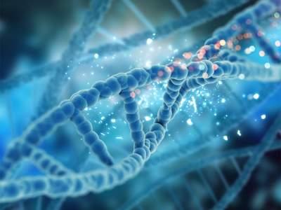 После смерти организма гены могут оживать