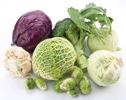 Назван овощ, защищающий организм от старения