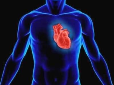 Врачи назвали необычный фактор риска заболеваний сердца