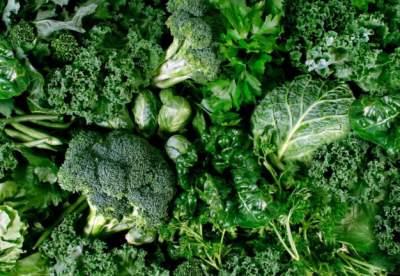 Диетолог рассказал, как правильно выбирать зеленые овощи