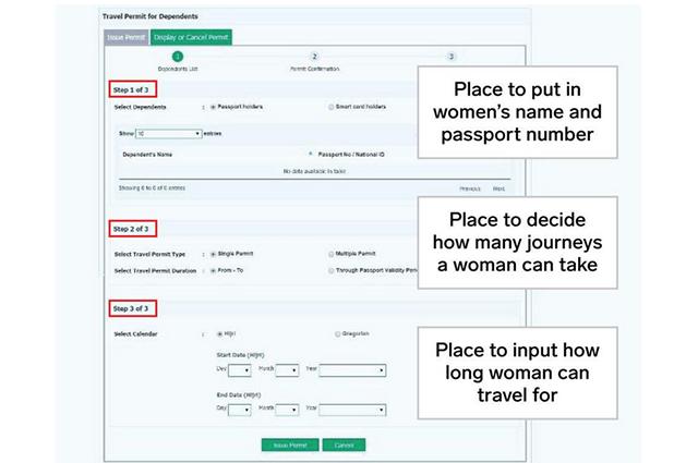 Скриншот страницы приложения, где требуется внести паспортные данные женщины, а также указать количество и продолжительность разрешенных поездок