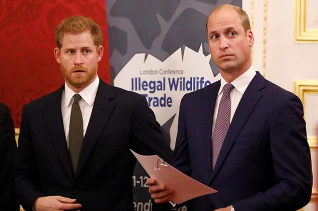 СМИ: принц Гарри поссорился с принцем Уильямом из-за Меган Маркл