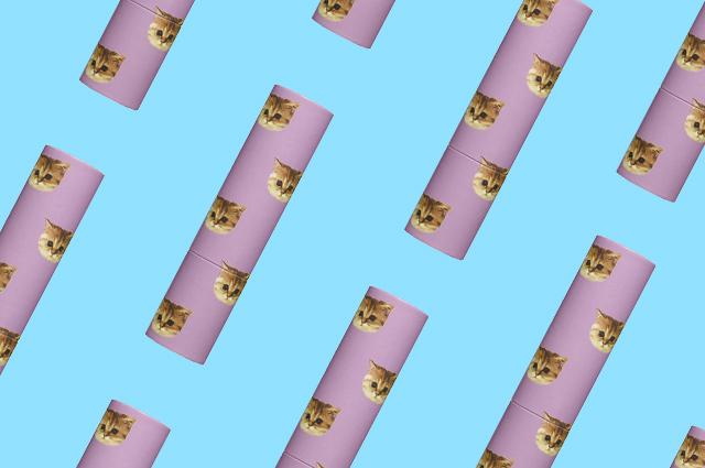 Бьюти-дайджест: от помады для любительниц кошек до накладных ресниц на магнитах