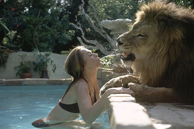 Минутка ретро: как благодаря маме и отчиму 13-летняя Мелани Гриффит оказалась в постели со львом