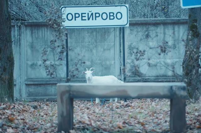 В Россию с любовью: Наталья Орейро представила клип, снятый в Балашихе