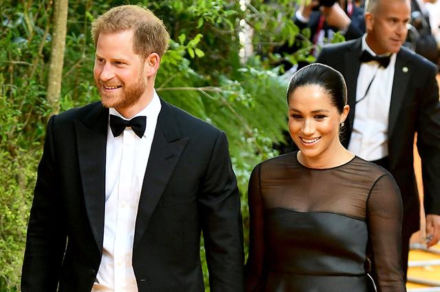 Принц Гарри заявил, что у них с Меган Маркл будет всего двое детей — из-за экологического кризиса на планете