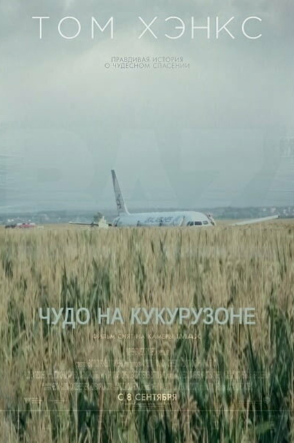 В сети обсуждают героизм пилотов, посадивших самолет на кукурузное поле