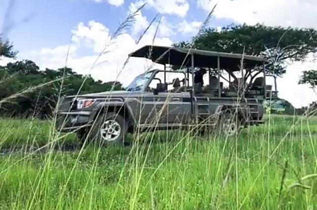 Княгиня Шарлен рассказала о первом путешествии своих детей в ее родную Африку: видео