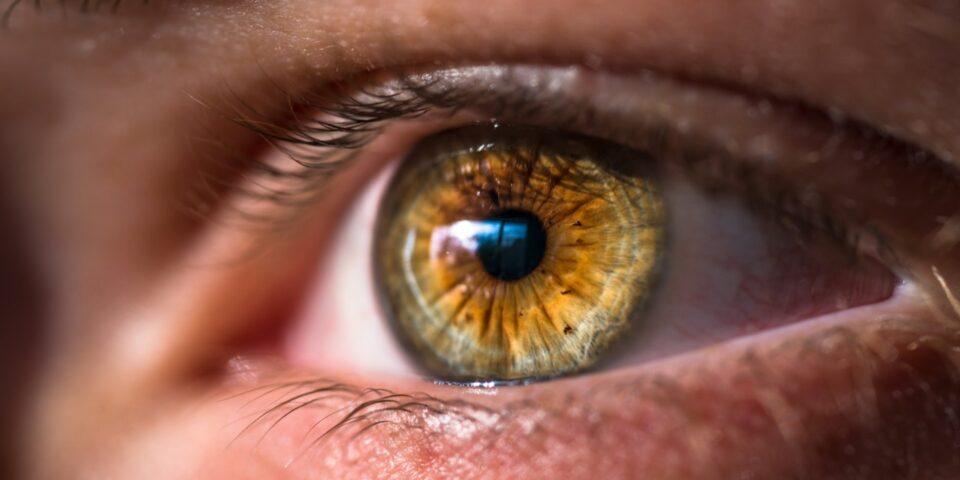 Неврологи объяснили, что делать, если дергается глаз