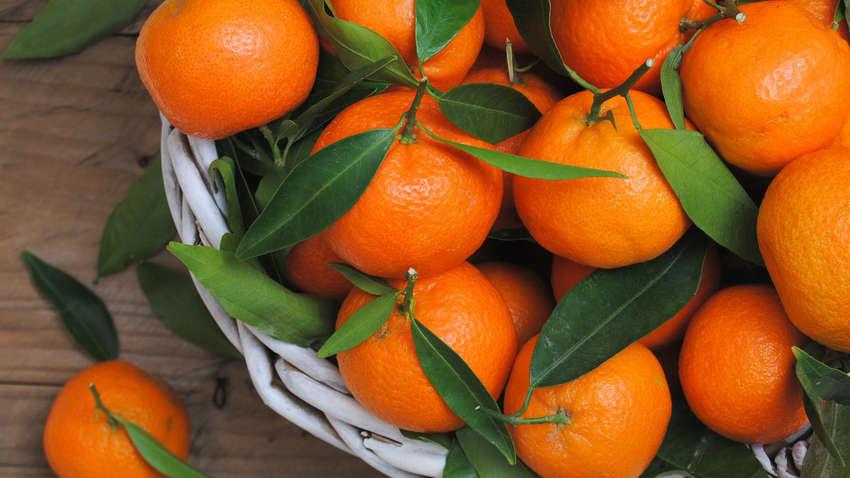 Названо оптимальное количество мандаринов в день