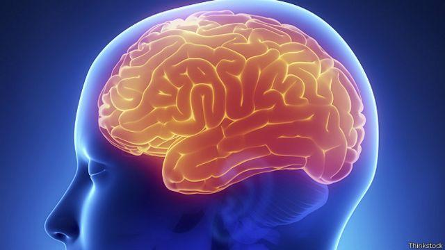 Названа пищевая привычка, вызывающая старение мозга