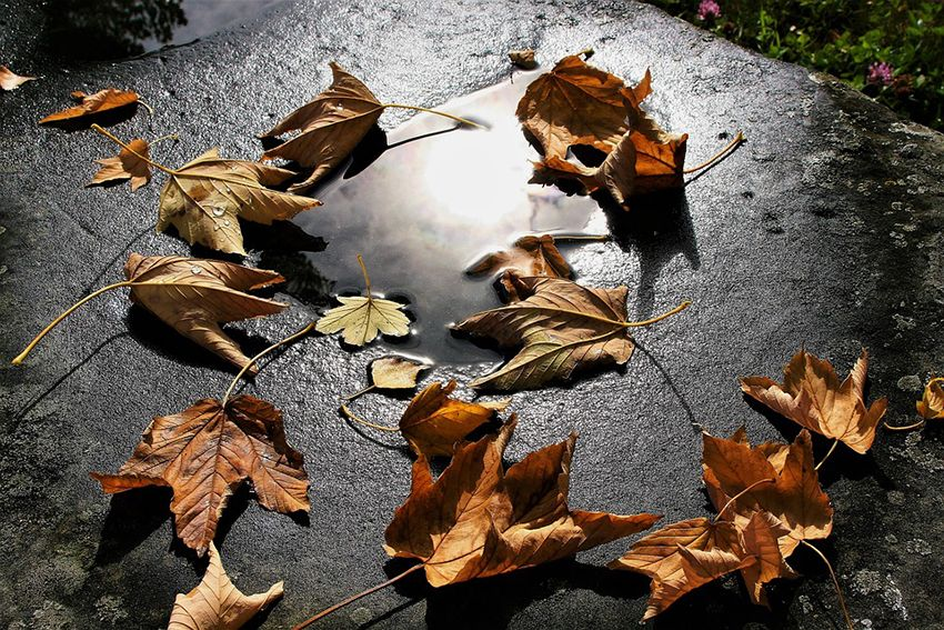 Осенняя хандра: пять эффективных способов вернуть хорошее настроение