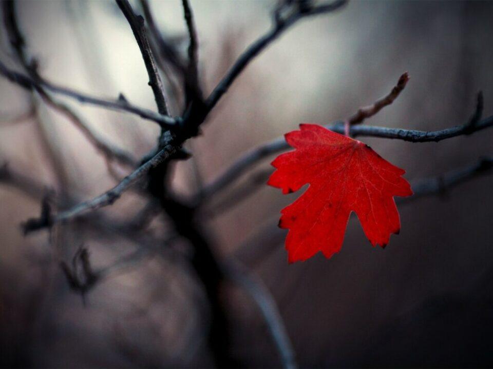 Хандра или депрессия: психологи рассказали, как улучшить настроение осенью