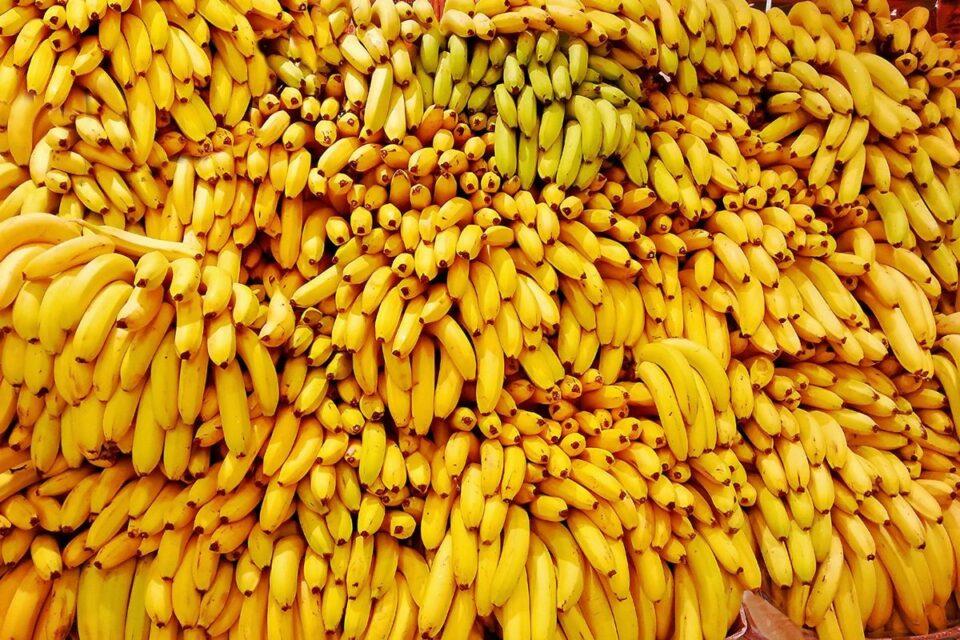 Тринадцать продуктов, которые нельзя употреблять людям с болезнями почек