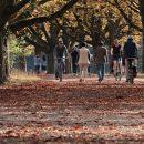 Пять веских причин каждый день выходить на прогулку