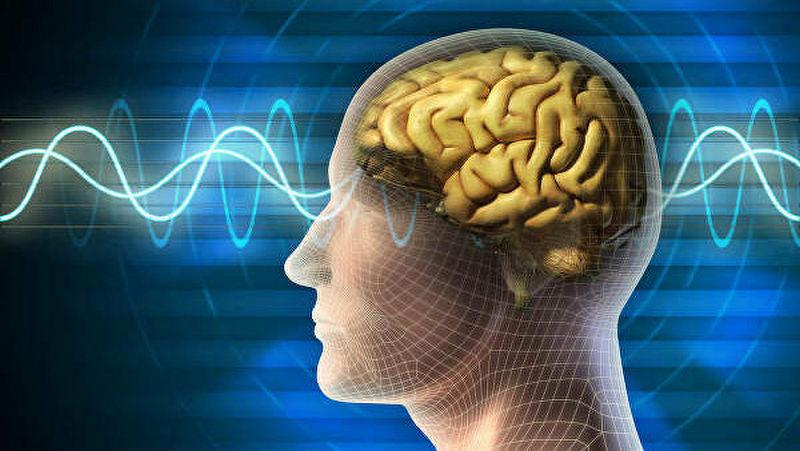 Ученые нашли связь между аллергией и стрессом