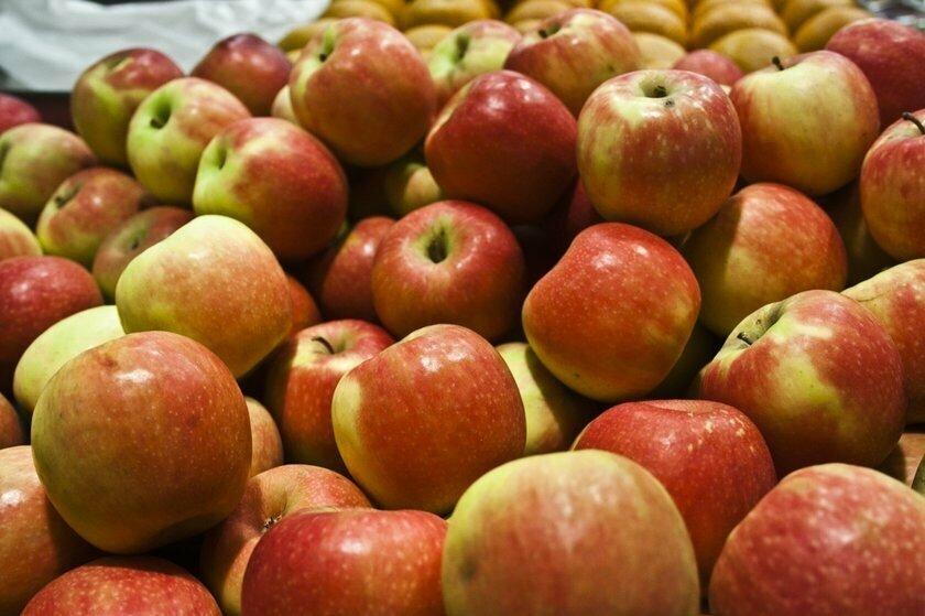 Развенчаны популярные мифы о пользе яблок